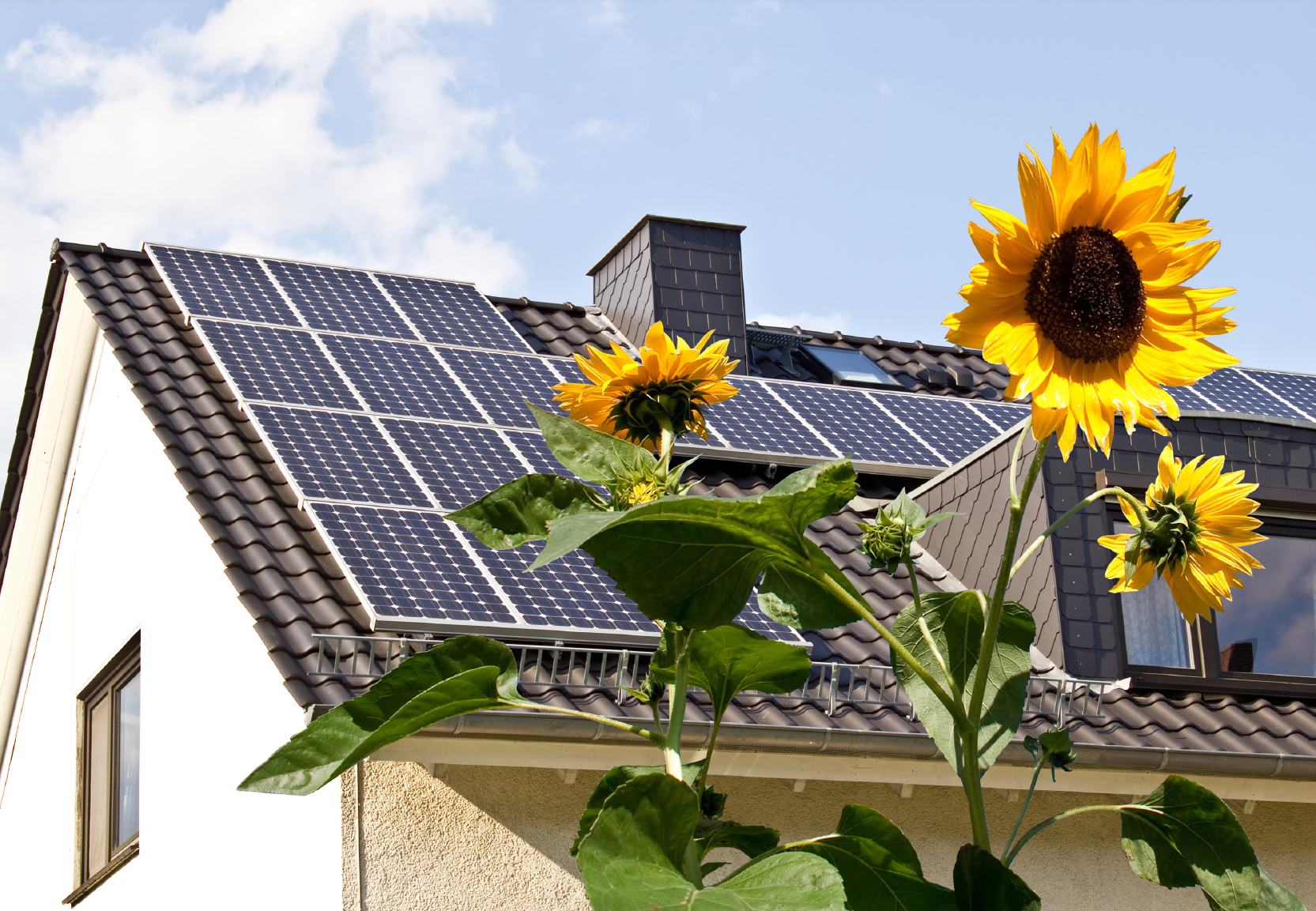 house with solar panels on roof and sunflowers in forefront